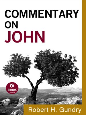 cover image of Commentary on John
