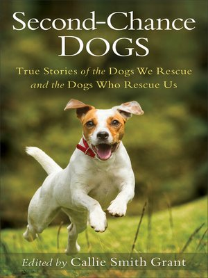 cover image of Second-Chance Dogs