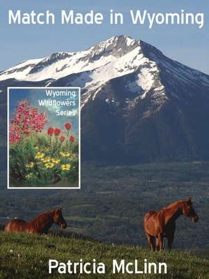 cover image of Match Made in Wyoming