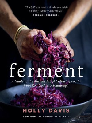 cover image of Ferment