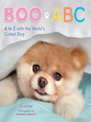 cover image of Boo ABC