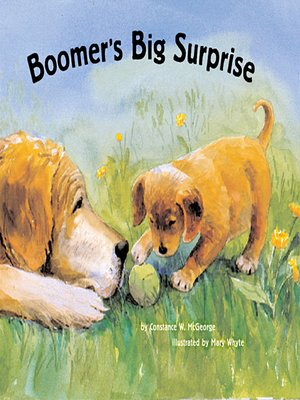 cover image of Boomer's Big Surprise