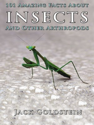 cover image of 101 Amazing Facts About Insects