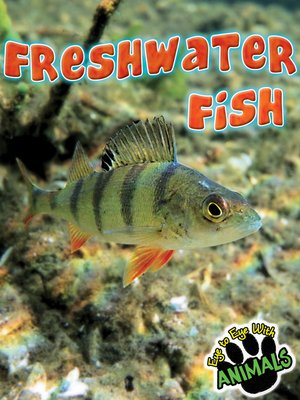 cover image of Freshwater Fish