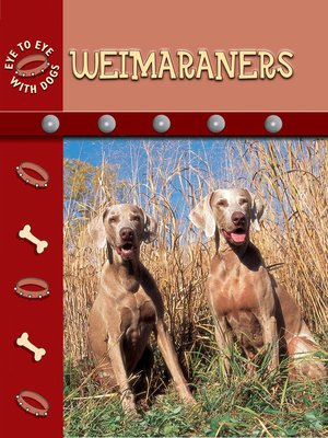 cover image of Weimaraners