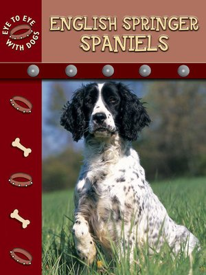 cover image of English Springer Spaniels