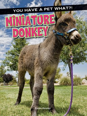 cover image of Miniature Donkey