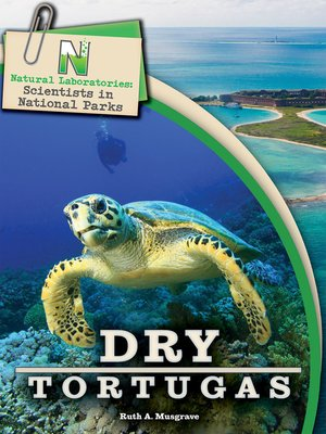 cover image of Dry Tortugas, Grades 4 - 8
