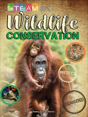 cover image of STEAM Jobs in Wildlife Conservation