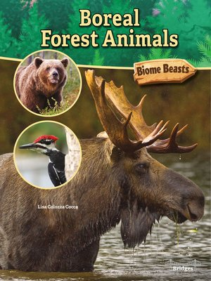 cover image of Boreal Forest Animals