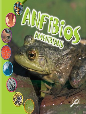 cover image of Anfibios (Amphibians)