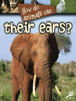 cover image of How Do Animals Use Their Ears?