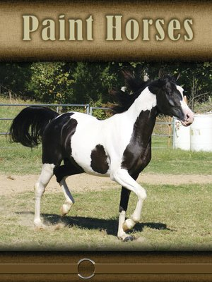 cover image of Paint Horses
