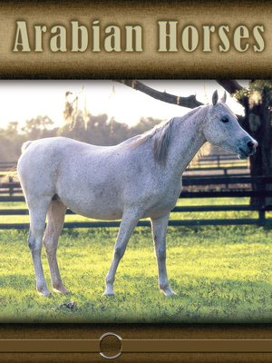 cover image of Arabian Horses