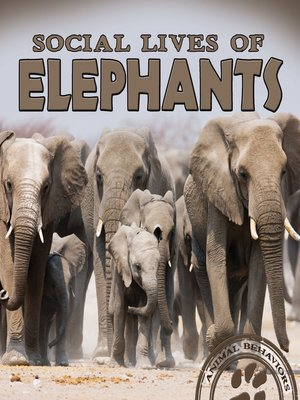 cover image of Social Lives of Elephants