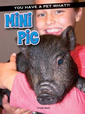 cover image of Mini Pig