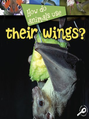 cover image of How Do Animals Use Their Wings?