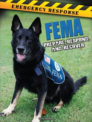 cover image of FEMA