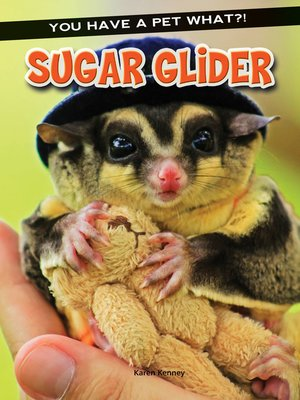 cover image of Sugar Glider