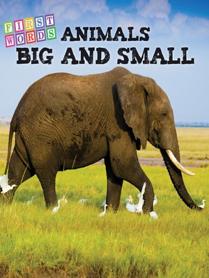 cover image of Animals Big and Small