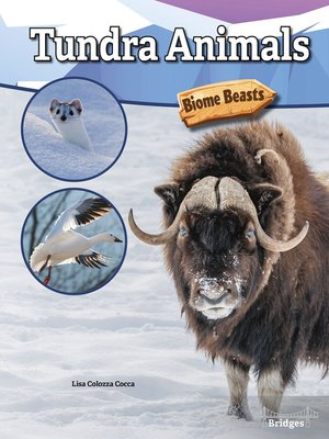 cover image of Tundra Animals
