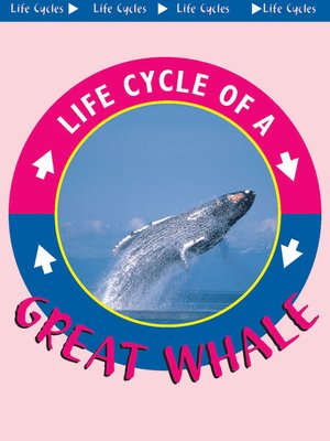 cover image of Great Whale