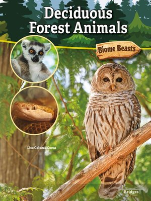 cover image of Deciduous Forest Animals