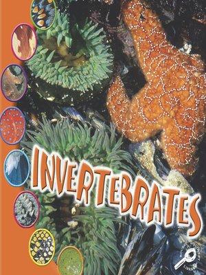 cover image of Invertebrates