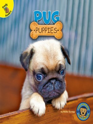 cover image of Pug Puppies