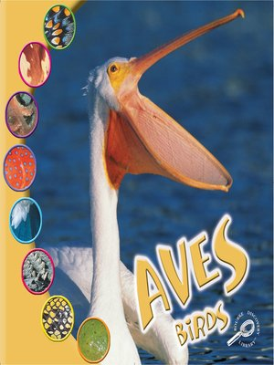 cover image of Aves (Birds)