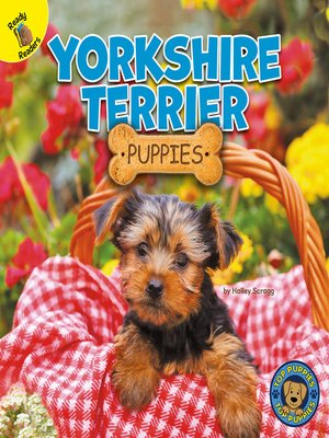 cover image of Yorkshire Terrier Puppies