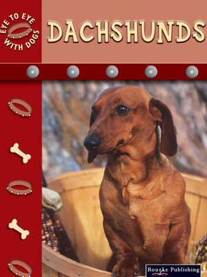 cover image of Dachshunds