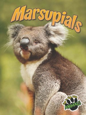 cover image of Marsupials
