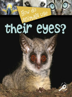 cover image of How Do Animals Use Their Eyes?