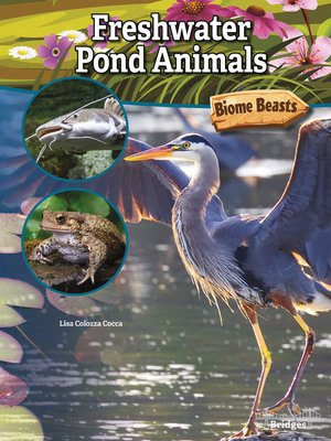 cover image of Freshwater Pond Animals