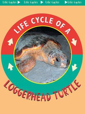 cover image of Loggerhead Turtle