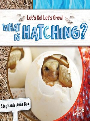 cover image of What Is Hatching?