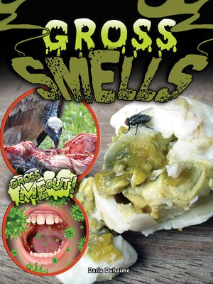cover image of Gross Smells