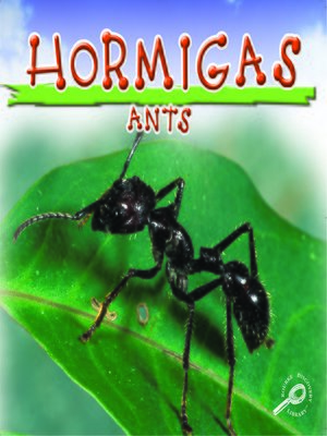 cover image of Hormigas (Ants)
