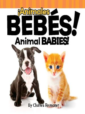 cover image of ¡Animales bebés! (Animal Babies)