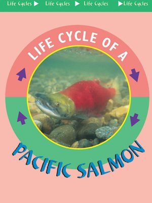 cover image of Pacific Salmon