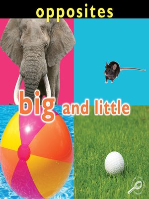 cover image of Big and Little