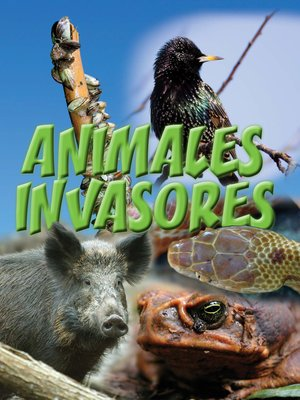 cover image of Animales invasores (Animal Invaders)