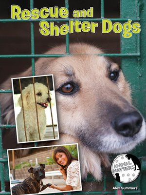 cover image of Rescue and Shelter Dogs