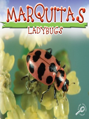 cover image of Mariquitas (Lady Bugs)