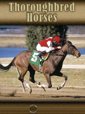 cover image of Thoroughbred Horses