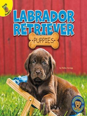 cover image of Labrador Retriever Puppies