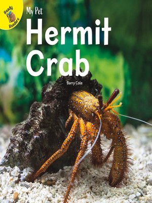 cover image of My Pet Hermit Crab