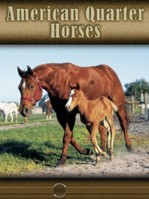 cover image of American Quarter Horse