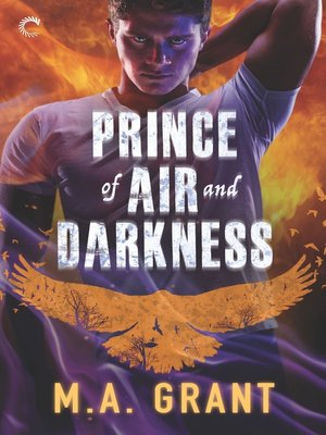 cover image of Prince of Air and Darkness--A Gay Fantasy Romance